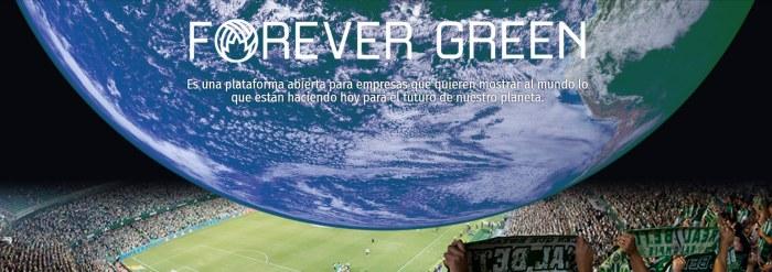 Forever Green: la plataforma del Betis contra el cambio climático